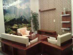 Bộ Bàn ghế  Gỗ phòng khách BG05